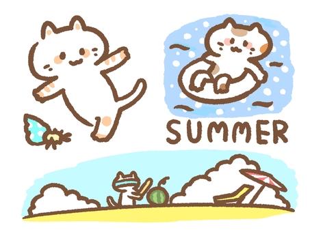 Summer cat set