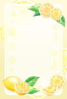 Lemon _01a_fr01