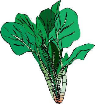 Spinach, spinach