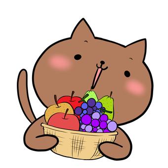 과일 바구니와 고양이 차