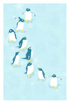 ポストカード(ジェンツーペンギン)
