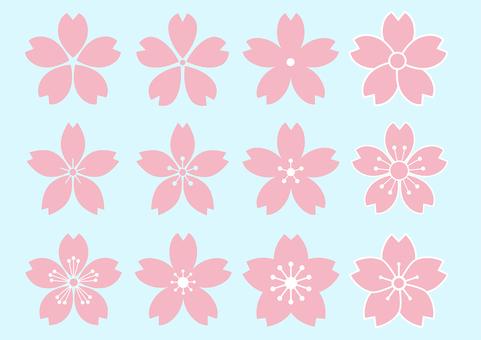 Sakura's flower design 12 species