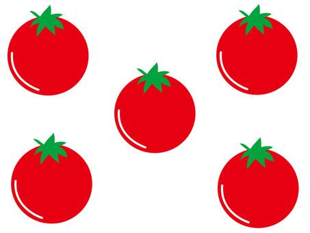 Mini Tomato Material 1