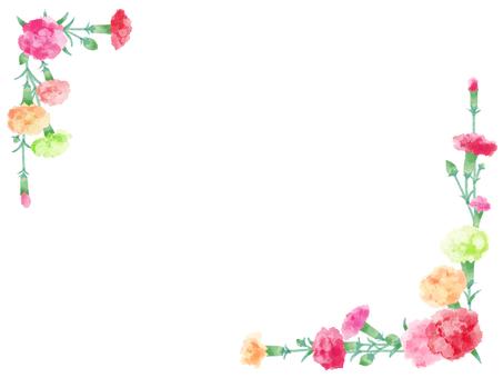 Carnation 18