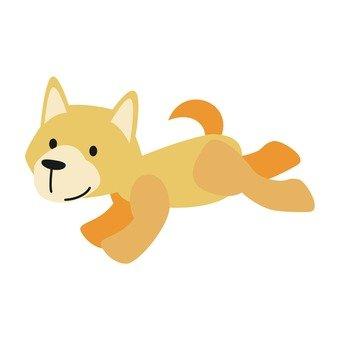 개 - 달리는 개