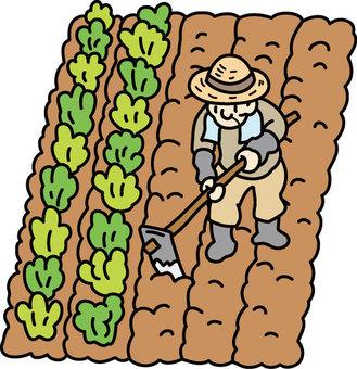 Field - Plowing