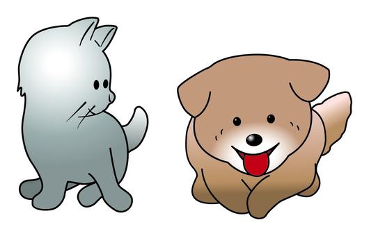 Puppies & kitten