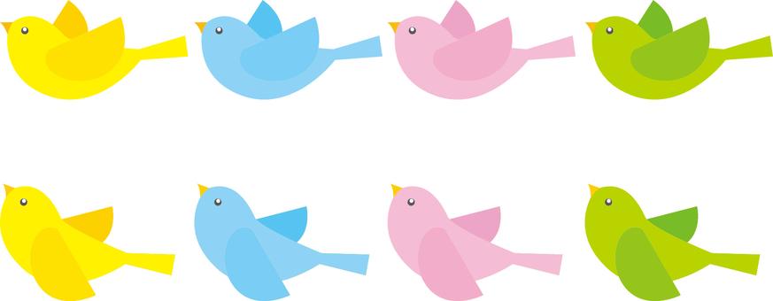 Animals birds (2 types 4 colors)