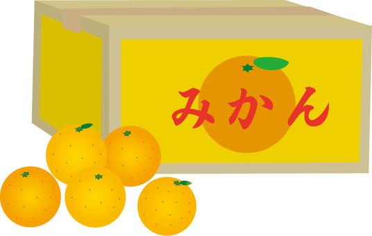 橘子和紙板箱