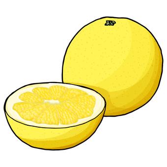 Grapefruit / Grapefruit
