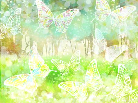 나비의 숲