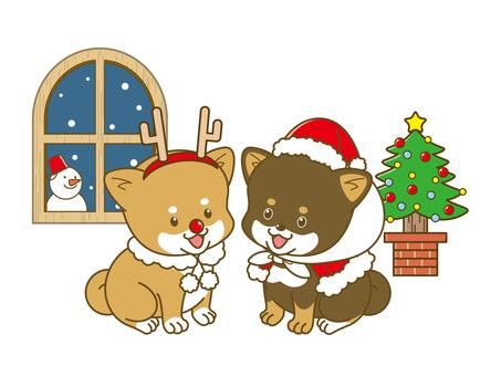 Poach Shiba _ Christmas _ 01