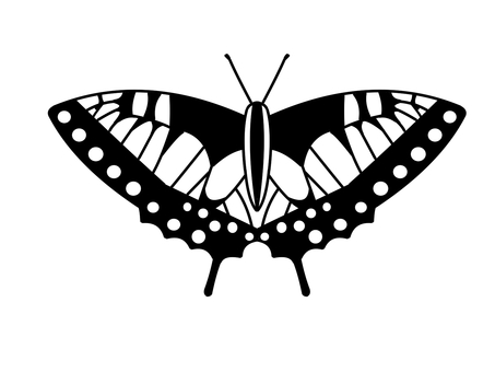 Old World Swallowtail (monochrome)