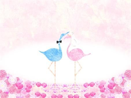 Roses _ Animals _ Background 03