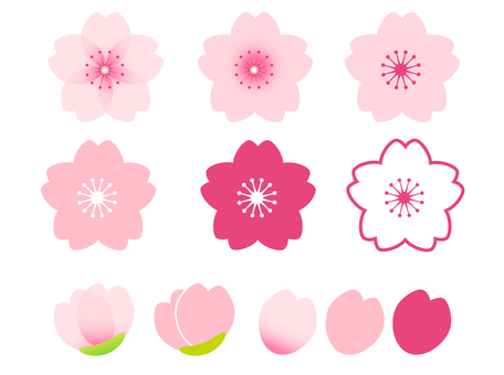 벚꽃 소재 04