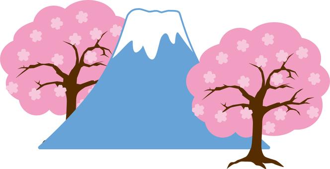 후지산 벚꽃