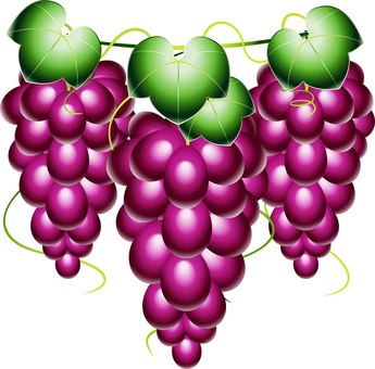 Three grapes