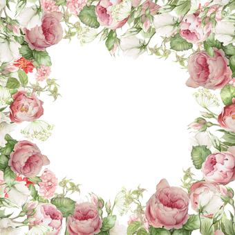 Flower frame of gentle color rose - Frame