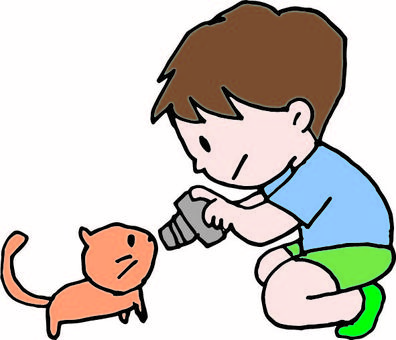 Boys and cats 2