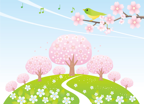 Scenery of cherry blossoming hill and blue sky part 2