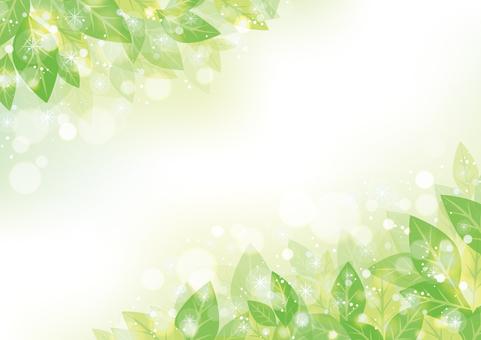 綠葉框架01