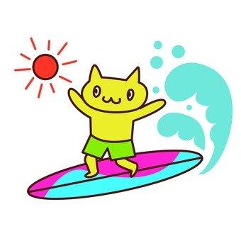 파도 타기 고양이