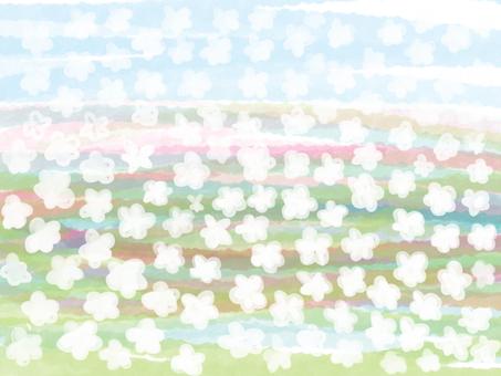 Gentle flower garden 2