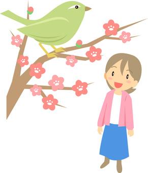 봄 / 매화와 꾀꼬리