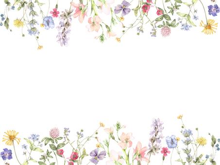 꽃 테두리 216- 겸손한 꽃 퍼레이드의 테두리