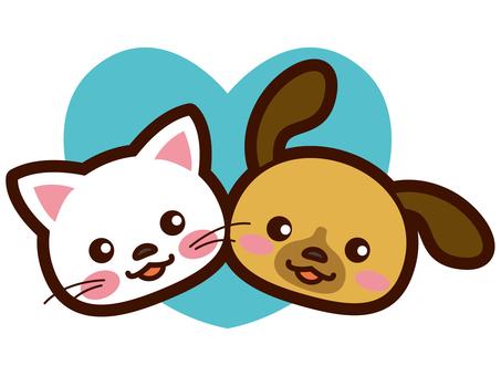 一只狗和一只猫的一个很好的例子