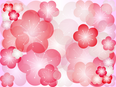 Plum blossom illustration