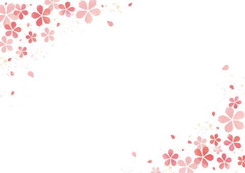 벚꽃의 프레임 2