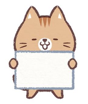 Informational cat