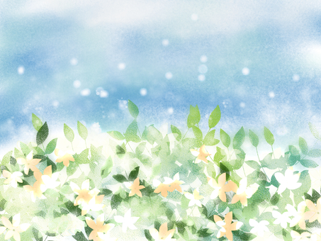Jasmine's fragrance