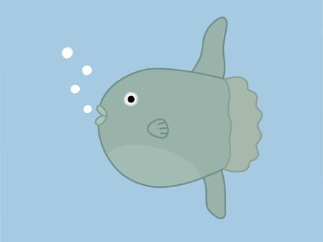 Fur-fried sunfish