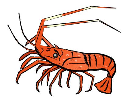 Japanese-style material Ise shrimp Ikege