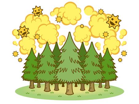 Cedar Trees and Pollen 02