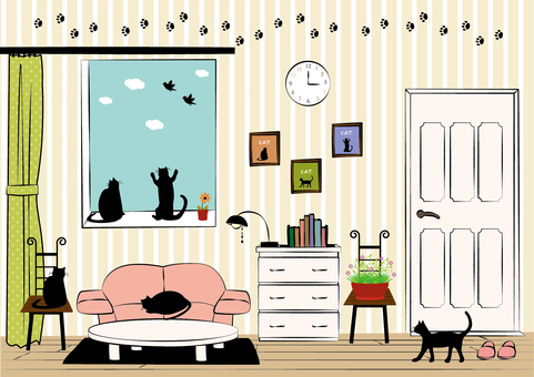 Room and cat