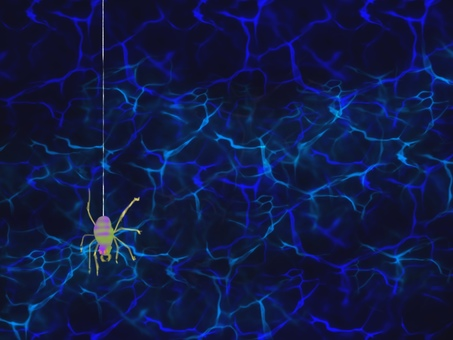 Spider's Thread Spider Trap
