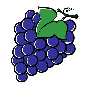 Grape navy blue