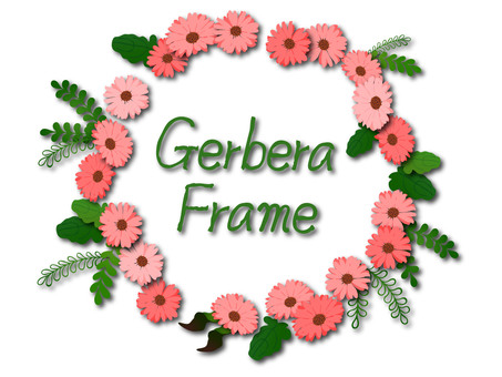 Gerbera frame with pink shadow