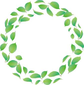 新鮮的綠色圓環