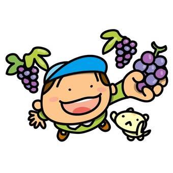 葡萄採摘和男孩