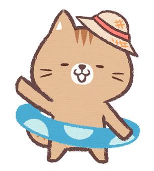 튜브 고양이