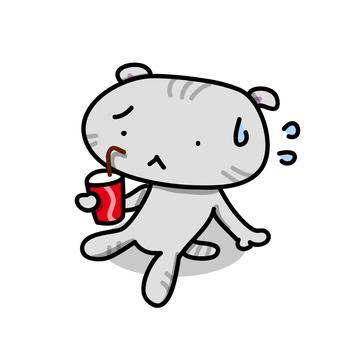 뜨거운 주스를 마시는 고양이
