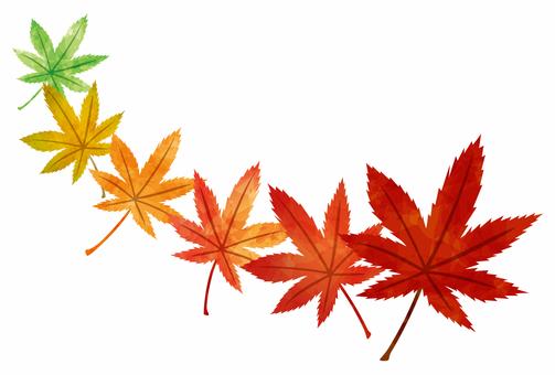 단풍 여름부터 가을