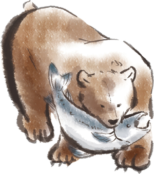 Bear and salmon 001