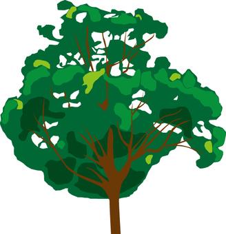 Planting tree 2