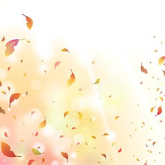 바람에 흩 날리는 나뭇잎