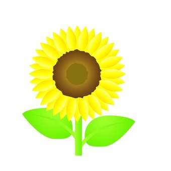 Summer fun poetry - sunflower